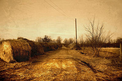 Indiana Landscapes Photograph - Strawmill Road by Mark Orr