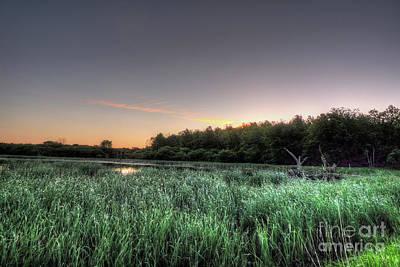 Streaky Swamp Sunrise Print by Deborah Smolinske