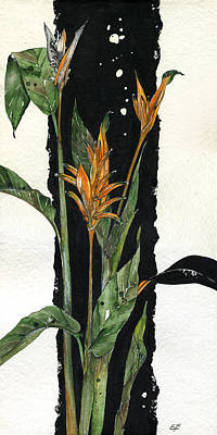 Strelitzia Drawing - Strelitzia - Bird Of Paradise 12 by Elena Yakubovich