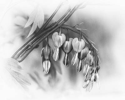 String Of Hearts Print by Susan Capuano