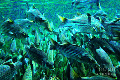 Wingsdomain Digital Art - Striped Bass - Painterly V1 by Wingsdomain Art and Photography