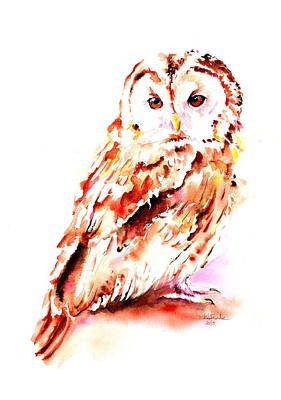 Visual Creations Painting - Strix Aluco by Isabel Salvador
