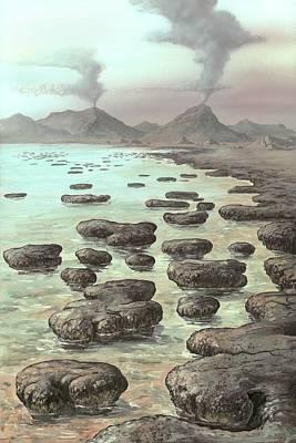Stromatolites Print by Richard Bizley