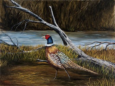 Strutting Pheasant Original by Darice Machel McGuire