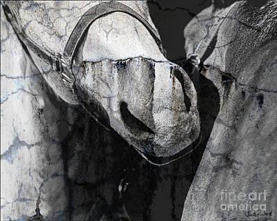 Judy Wood Digital Art - Study In Stone by Judy Wood