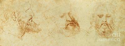 Crayons Drawing - Study Of A Male Head by Leonardo Da Vinci