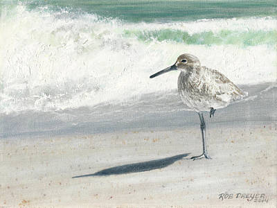 Sandpiper Painting - Study Of A Sandpiper by Rob Dreyer AFC