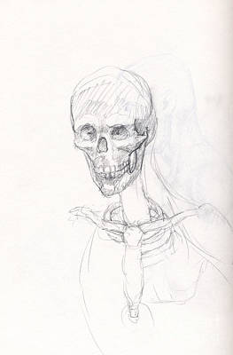 Whistler Drawing - Study Of A Skull After Leonardo by Whistler Kenworthy