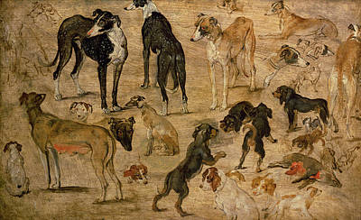 Breed Study Painting - Study Of Hounds, 1616 by Jan the Elder Brueghel