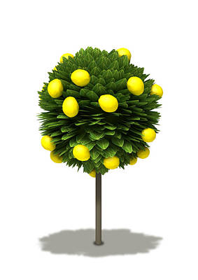 Lemon Digital Art - Stylized Lemon Tree by Allan Swart