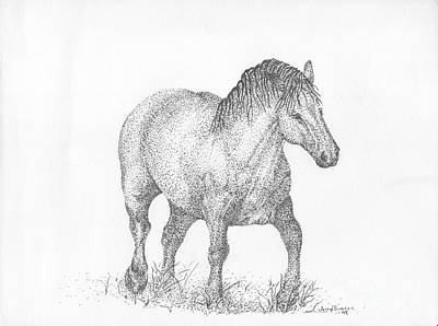 Draft Horses Drawing - Suffolk Punch Draft Horse by J E Vincent