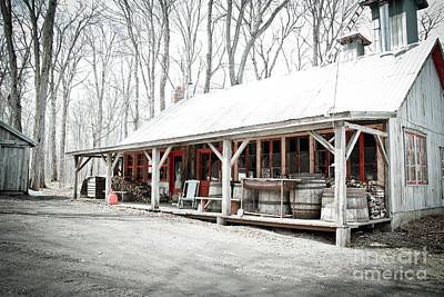 Sugar Shack Print by Isabel Poulin