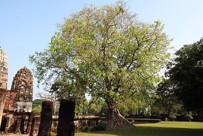 Sukhothai Historical Park - Sukhothai Thailand - 011351 Print by DC Photographer