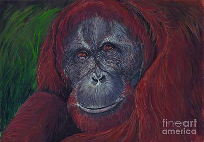 Orangutan Painting - Sumatran Orangutan by Tom Blodgett Jr