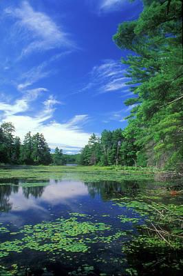 Summer At Breakneck Pond Print by John Burk