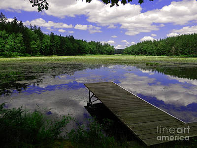 Pa State Parks Photograph - Summer At The Lake by David Rucker