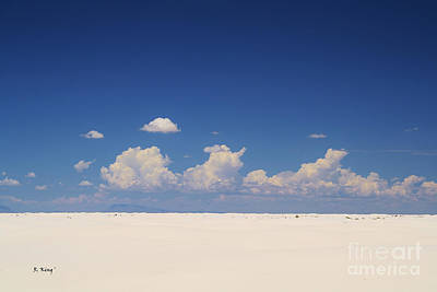 Summer At White Sands National Monument Print by Roena King