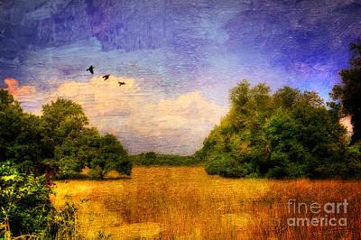 Digital Art - Summer Country Landscape by Lois Bryan