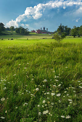 New England Dairy Farms Photograph - Summer Days by Bill Wakeley