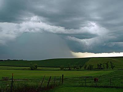 Summer Downpour Original by James Peterson