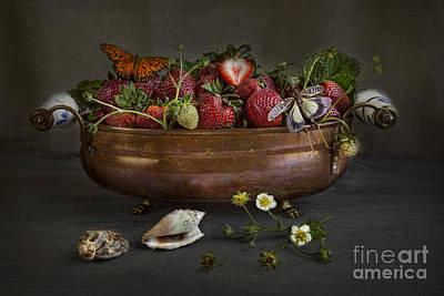 Summer Print by Elena Nosyreva