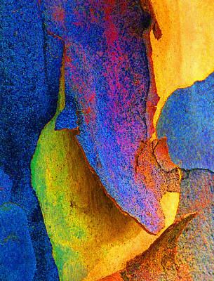 Fantasy Bark Photograph - Summer Eucalypt Abstract 11 by Margaret Saheed