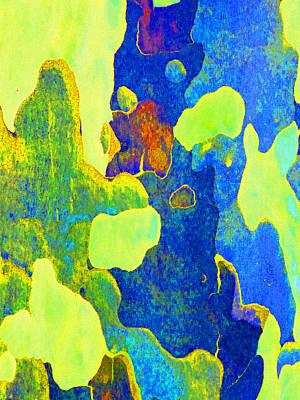 Fantasy Bark Photograph - Summer Eucalypt Abstract 14 by Margaret Saheed