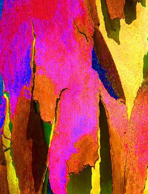 Fantasy Bark Photograph - Summer Eucalypt Abstract 8 by Margaret Saheed