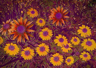 Summer Garden Print by Ann Powell