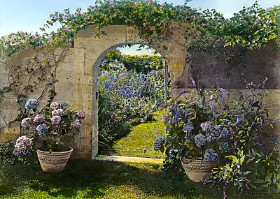 1800s Photograph - Summer Garden by Terry Reynoldson