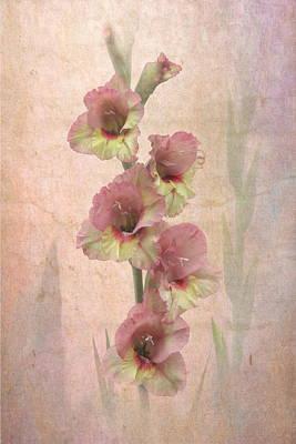 Summer Glad Print by Angie Vogel