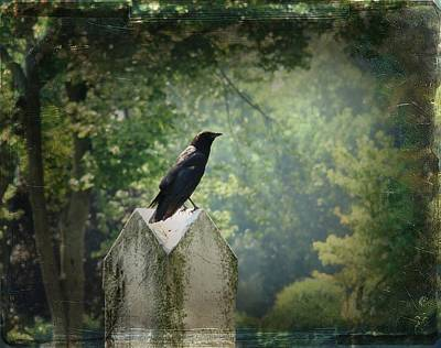 Birds In Graveyard Photograph - summer Gothic Crow by Gothicolors Donna Snyder