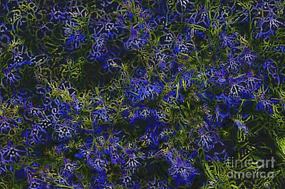 Abstract Forms Digital Art - Summer In Bloom by Carol Lynch