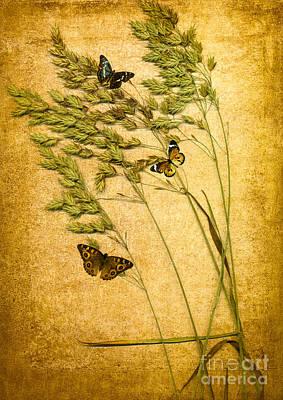 Insect Digital Art - Summer Meadow by Jan Bickerton