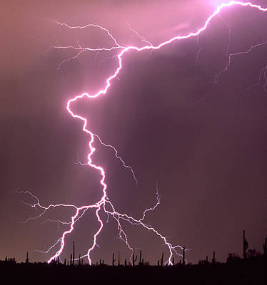 Lightning Bolt Photograph - Summer Monsoon Season In The Sonoran by Thomas Wiewandt