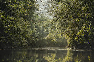 Summer On The River - Landscape - Trees Print by SharaLee Art