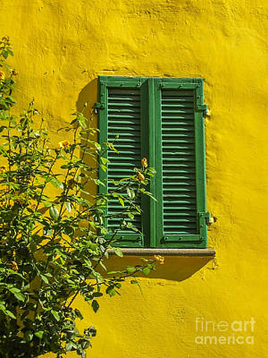 Colourfull Photograph - Summer  by Patricia Hofmeester