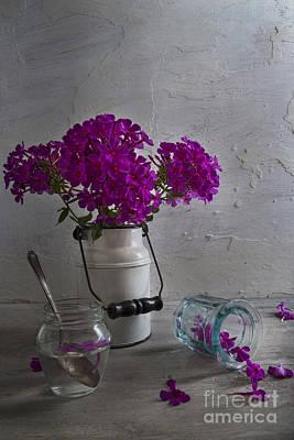 Water Jars Photograph - Summer Phlox by Elena Nosyreva