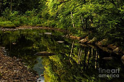 Summer Reflections Print by Thomas R Fletcher