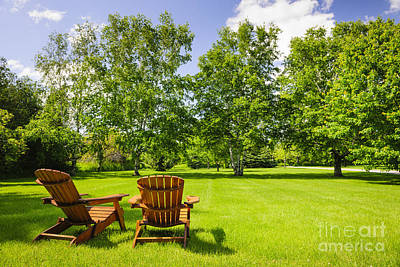 Landscaped Grounds Photograph - Summer Relaxing by Elena Elisseeva