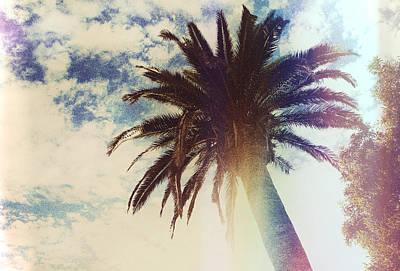 Sun Rays Digital Art - Summer Shade  by Kenny Noddin