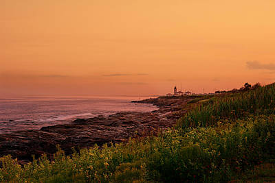 Summer Sunset Print by Lourry Legarde