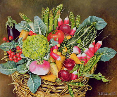 Cauliflower Painting - Summer Vegetables by EB Watts