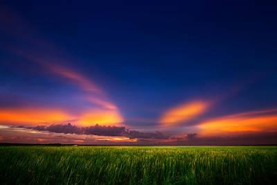 Beauty Mark Photograph - Summer Wind by Mark Andrew Thomas