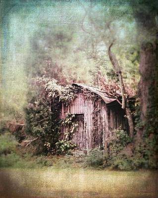 Summerfield Photograph - Summerfield Shed by Melissa Bittinger
