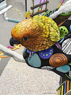 Parakeet Mixed Media - Sun Conure And It's Sleeping Bag by William Beauchamp