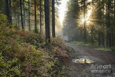 Huckleberry Road Print by Idaho Scenic Images Linda Lantzy
