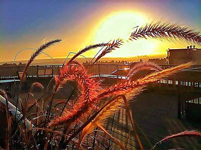 Ply Wood Photograph - Sun Rises Wheatley by Eddie G