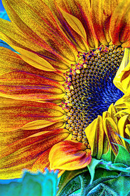 Sunflower Abstract Print by Heidi Smith