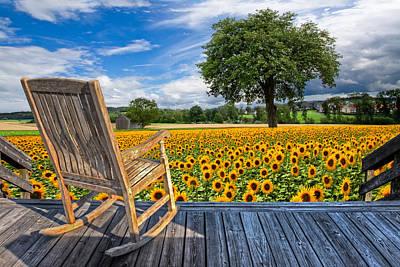 Rocking Photograph - Sunflower Farm by Debra and Dave Vanderlaan